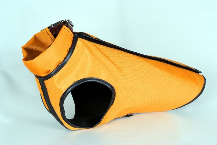 Safety Dog in Cordura Kevlar Ayrteck Buffetteria Spadoni
